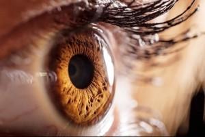 Чувствительность глаз к свету