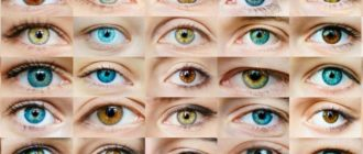 Цвета глаз по редкости